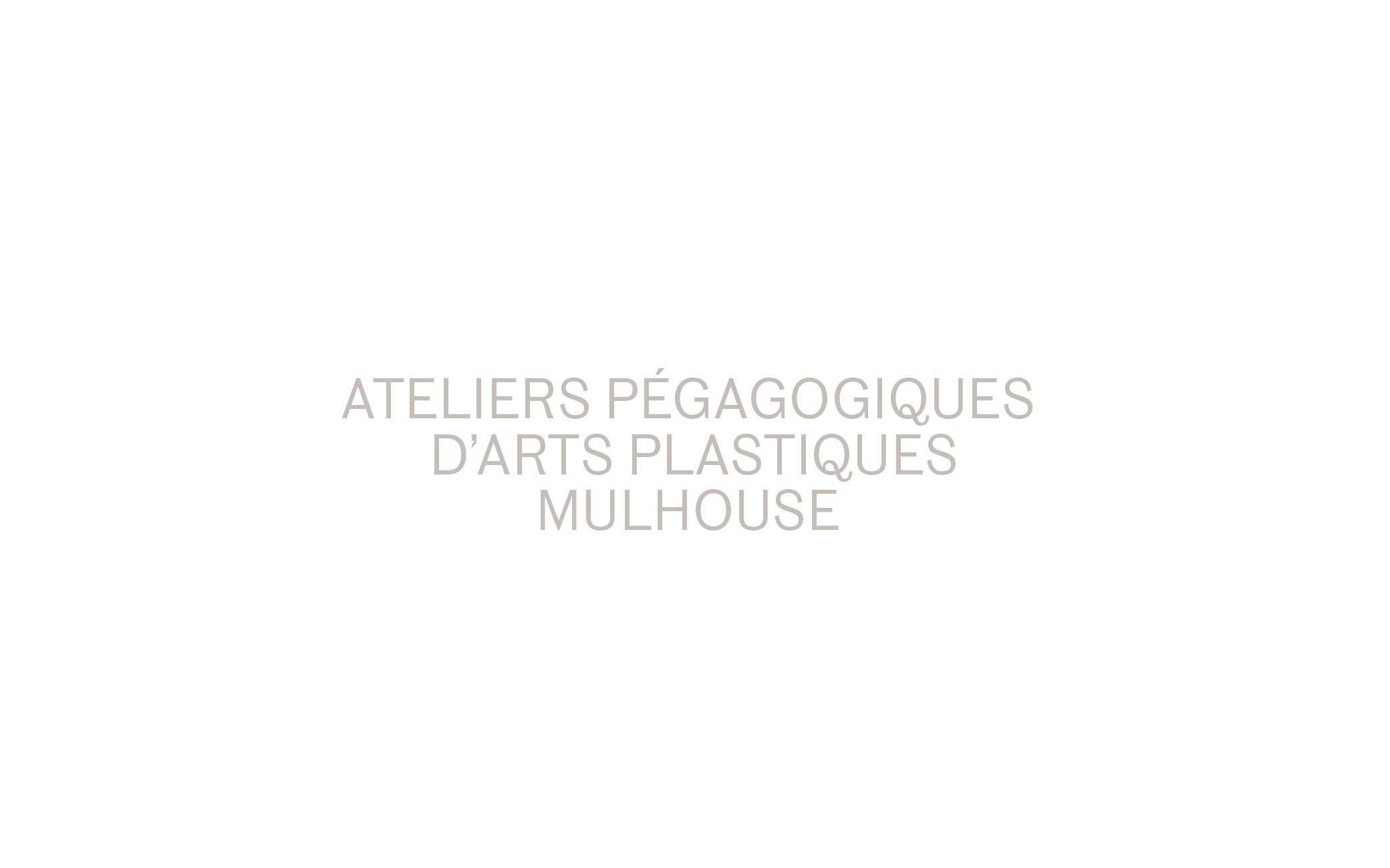 Interventions aux Ateliers pédagogiques d'arts plastiques, Ville de Mulhouse