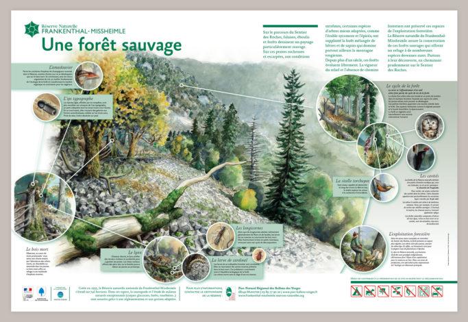 Réserve naturelle du Frankenthal-Missheimle